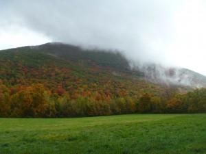Mount3
