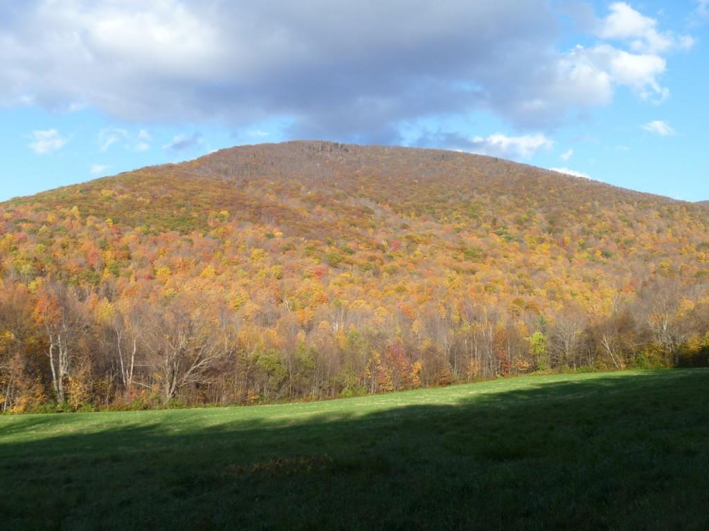 Mount33